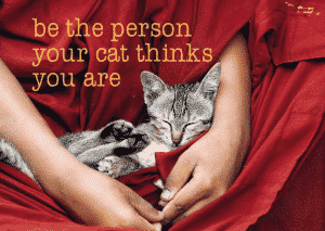 Ansichtkaarten Be the Person Your Cat
