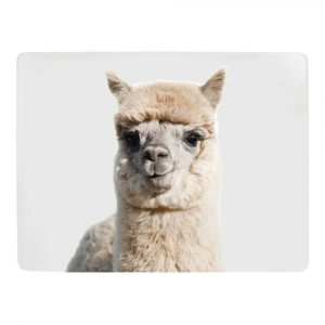 Placemats Alpaca (Set van 4)